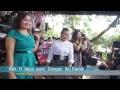 Live Organ Tarling Cus Amanda Kedung Anyar Ligung Majalengka