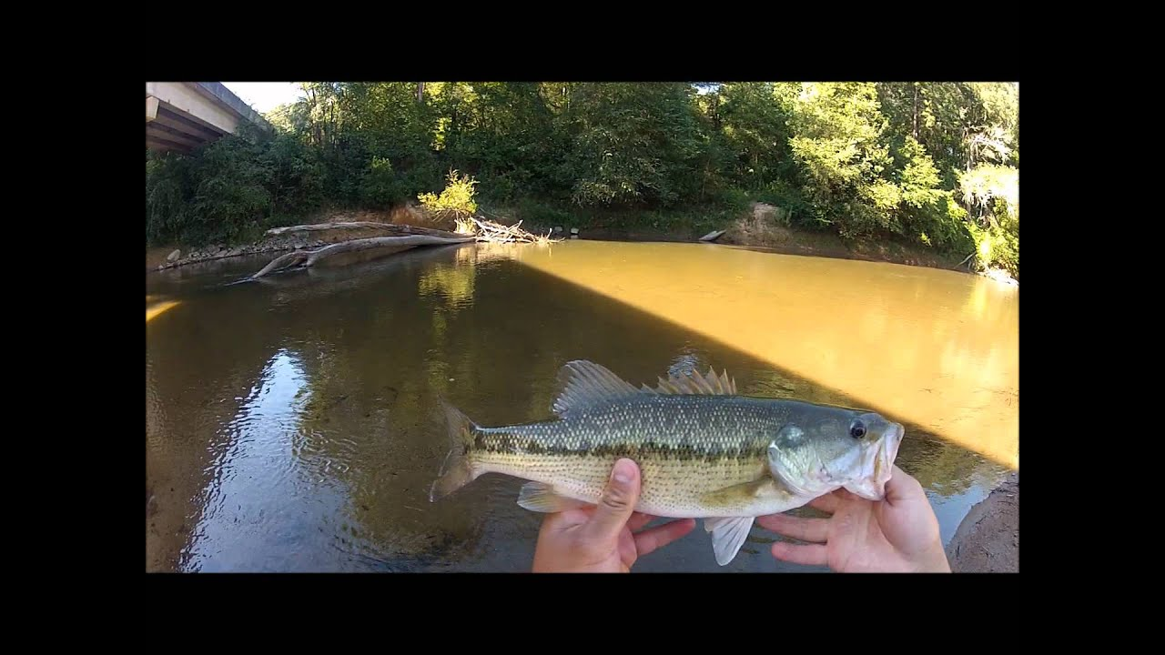 Upper chattahoochee river bass fishing youtube for Youtube bass fishing