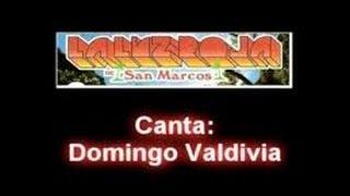 La Luz Roja de San Marcos Gro - Domingo Valdivia, Mix