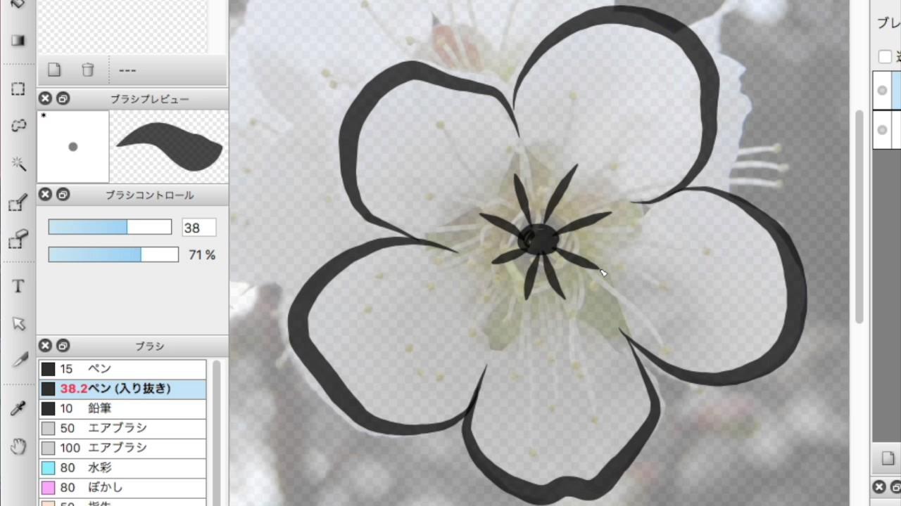 梅の花の水墨画毛筆風イラスト作成写真画像のイラスト化