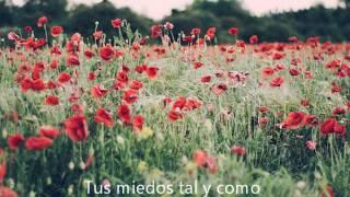 The Horrors - Scarlet Fields (Sub. Español)