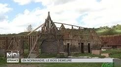 MADE IN FRANCE : En Normandie, le bois demeure