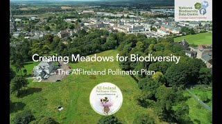 Creating Meadows for Biodiversity