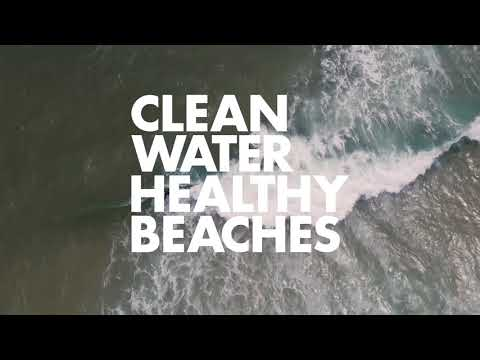 Surfrider Foundation: Interesting facts about the environmental organization