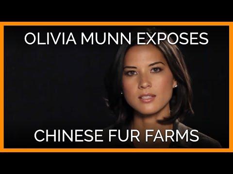 Olivia Munn Exposes Chinese Fur-Farm Cruelty