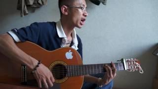 Nước Ngoài (Phan Mạnh Quỳnh) - Guitar đệm hát [HD]