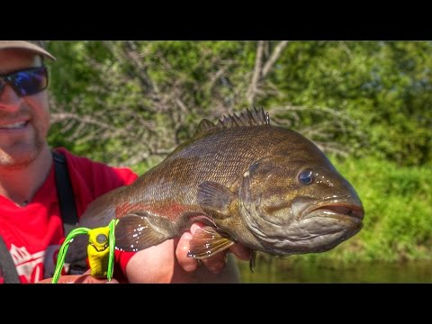 INSANE River Bass Fishing Using Hollow Body Frogs!