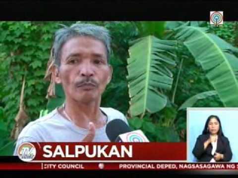 TV Patrol Palawan - Mar 20, 2017