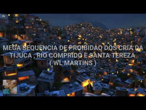 MEGA SEQUÊNCIA DE PROIBIDÃO PROS CRIA DA TIJUCA , RIO COMPRIDO E SANTA TEREZA [ WL MARTINS ] 2017