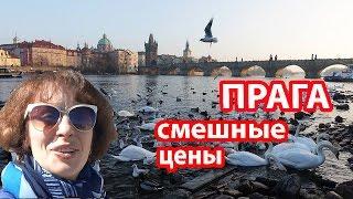 видео Отели Праги, Чехия