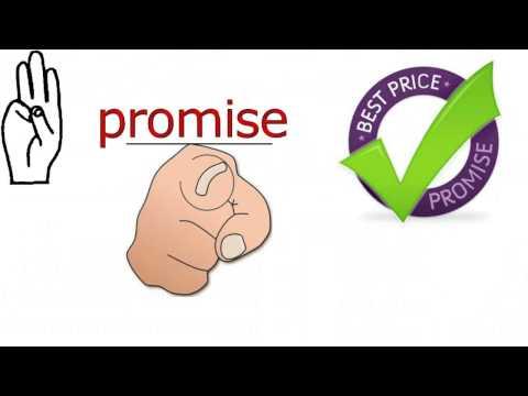 Five Star Insurance brokers | Auto insurance quote ,Brampton,Mississauga,Toronto ,Canada