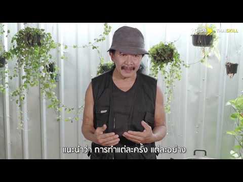 Thai Skill – เครื่องเทศสมุนไพรไทยราคาหลักสิบ สรรพคุณหลักล้าน
