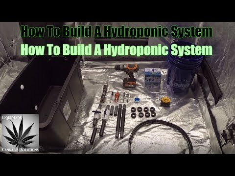 How To Build A Hydroponic System