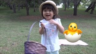 Egg Hunt - Learn About Animals with Kinder Surprise Toys | Baby Playful