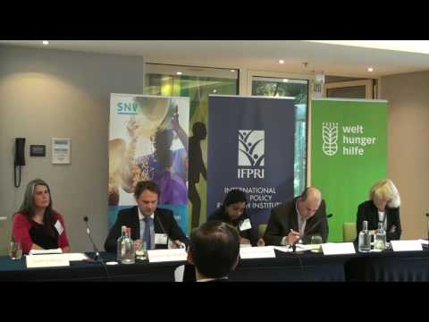 Panel Discussion: Enhancing Food Systems for Improved Urban Food Security and Nutrition