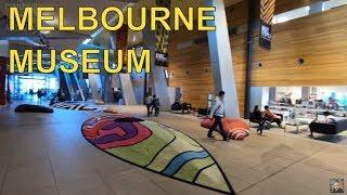 Visiting Melbourne Museum - Forest Secrets Gallery Tour Australia