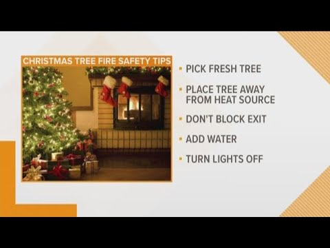 Martha Quinn - Wellness Shot: Christmas Tree Safety Tips