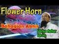 Ceramah Terbaru Ustaz Azhar Idrus bertajuk Flowerhorn Bahagian 3   Ustaz Azhar Idrus