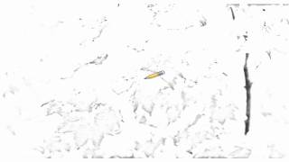 Auto Draw 2: Early Snowfall, Mount Hood National Forest, Oregon