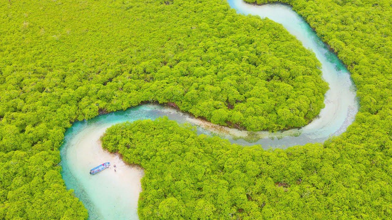 "Beautiful Nature: ""Secrets of The Caribbean"" - 3 Hour 4K Drone Footage of Panama"