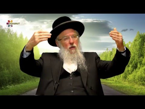 Maimonides' Guide for the Perplexed - Rabbi Dr. David Gottlieb