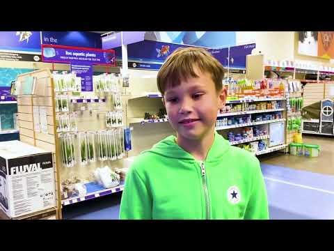 Макс и Катя не хотят меняться питомцами