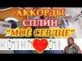 Моё сердце Аккорды Сплин Васильев песни на гитаре без баррэ Табы Бой Текст mp3