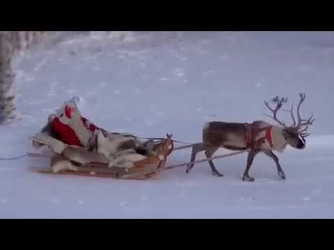 Movie& Christmas Song  WhiteChristmas/BiancoNatale jazz  by Nicamele Mp3