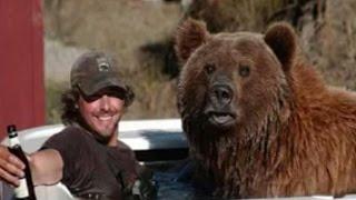 Медведь какой фильм посмотреть№61