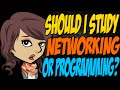 Should I Study Networking or Programming?