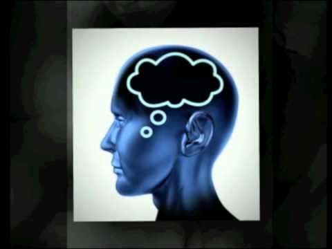 hqdefault - Le vieillissement de la mémoire : La mémoire humaine est constituée de systèmes multiples