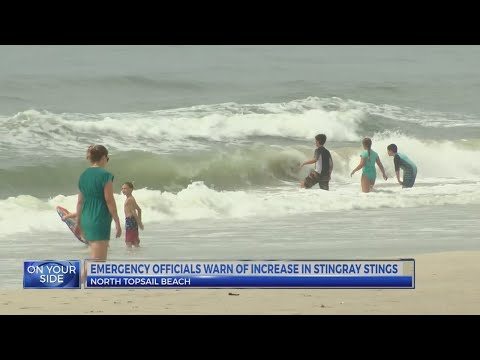 North Topsail Beach: About 40 string ray injuries in past month