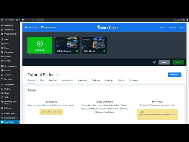 How To Add Smart Slider 3 Plugin Content Into WordPress Pages?