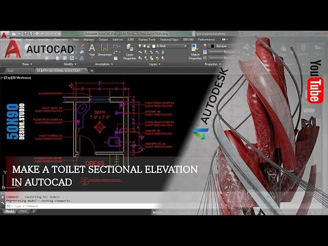 SECTIONAL ELEVATION IN AUTO-CAD | MODERN TOILET | DESIGN STUDIO