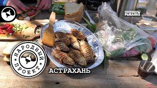 Пикник на рыбалке Астрахань Народный проект