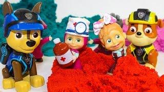 Щенячий патруль Смотреть новые серии Маша и Медведь игрушки сюрпризы Мультики для детей Paw Patrol