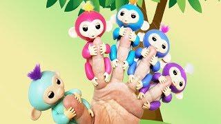원숭이들의 핑거송!! 서은이의 핑거링스 귀여운 원숭이 핑거 패밀리 송 그네 시소 Little Monkeys Finger Family Song