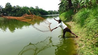 Net Fishing | Catching Fish With Cast Net | Net Fishing in the village (Part-300)