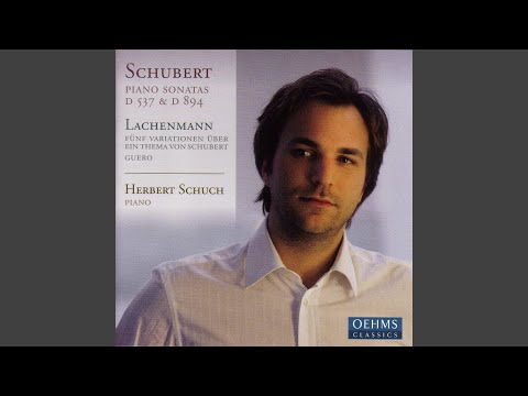 5 Variations on a Theme of Franz Schubert