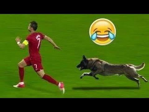 Les images les plus drôles du football | Football Funny |HD - YouTube