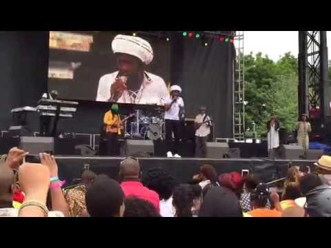Cocoa Tea. Groovin In The Park (6/28/15)
