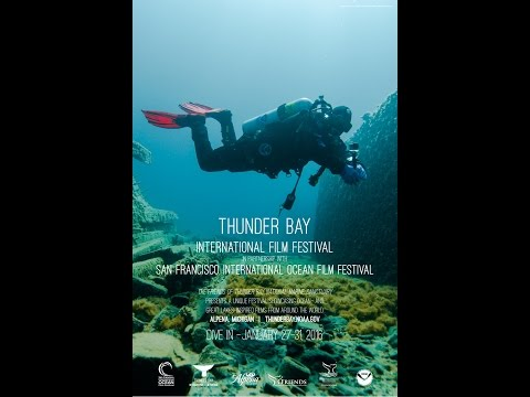 2016 Thunder Bay International Film Festival Trailer