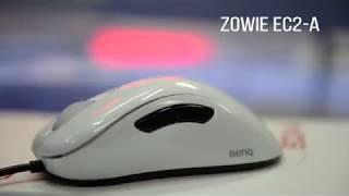 обзор игровой мыши Zowie EC2 A  Киберспортивный магазин clife.ru