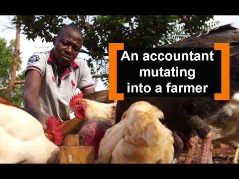 Benin: An accountant mutating into a farmer