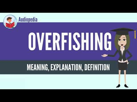What Is OVERFISHING? OVERFISHING Definition & Meaning
