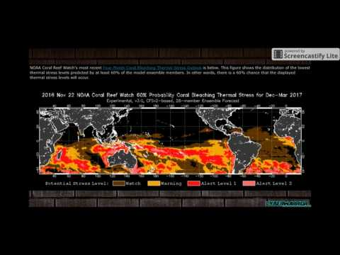 CLIMATE CHAOS!! 6th Mass Extinction Event By 2025?
