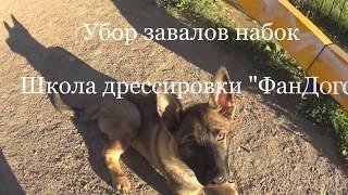 Собака заваливается во время комплекса набок. Как убрать?