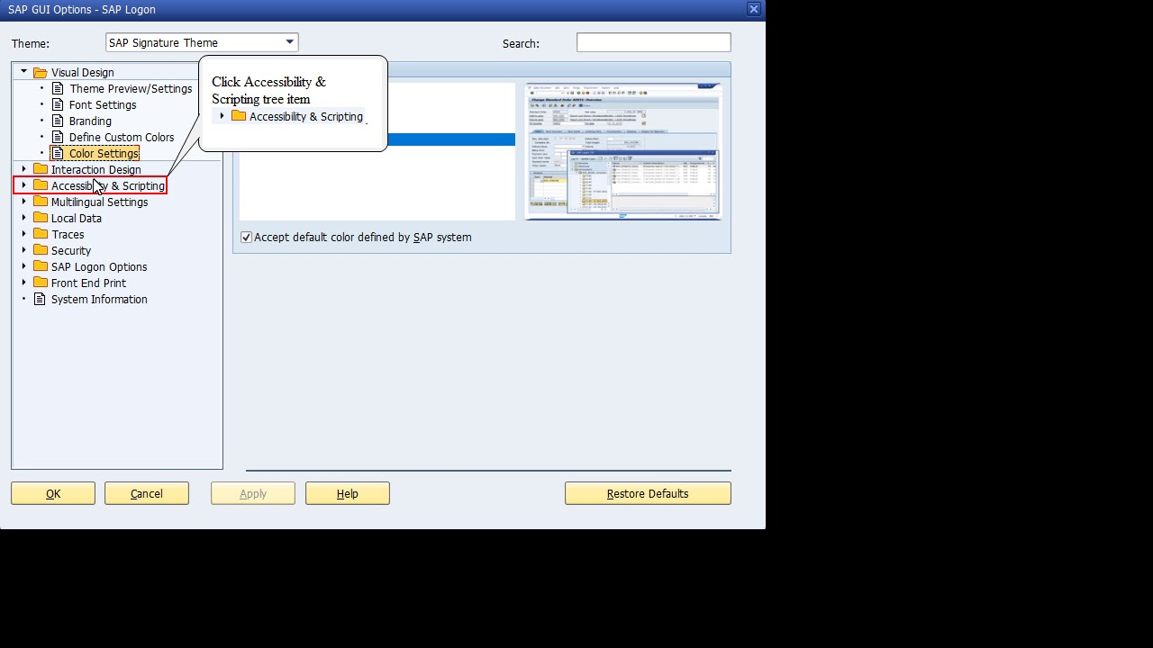 Enable SAP GUI Scripting