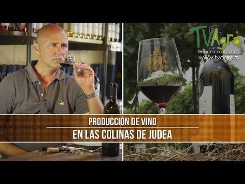 Como Producir Vinos En Las Colinas De Judea- TvAgro Por Juan Gonzalo Angel