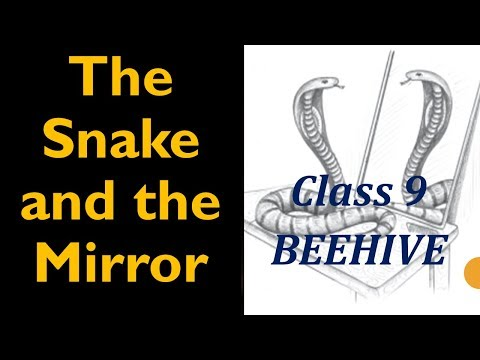 The Snake and the Mirror, Class 9 CBSE English Lesson